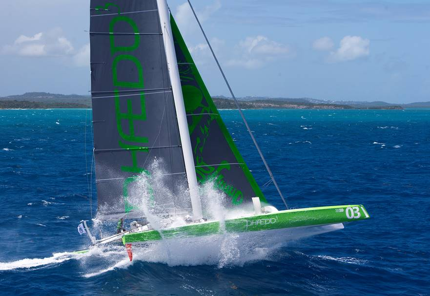 Phaedo Credit Richard Landgon Ocean Images